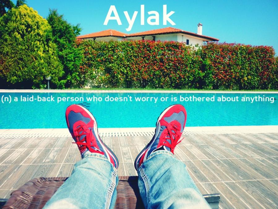 rsz_1aylak_2